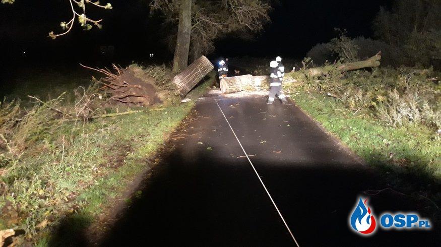Orkan Ksawery cz.3 OSP Ochotnicza Straż Pożarna