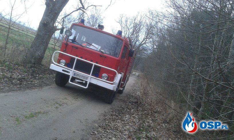 Przewrócone Drzewo! OSP Ochotnicza Straż Pożarna