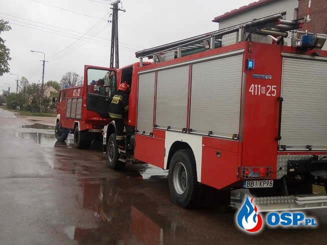 POŻAR GNIAZDA OSP Ochotnicza Straż Pożarna