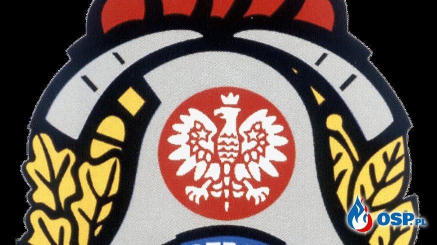 ZASADY ORGANIZACJI RATOWNICTWA WODNEGO W KRAJOWYM SYSTEMIE RATOWNICZO-GAŚNICZYM OSP Ochotnicza Straż Pożarna