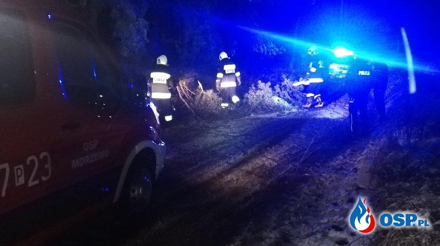 [Zdarzenie nr 1] Powalone drzewo na trasie Morzewo - Rzadkowo OSP Ochotnicza Straż Pożarna