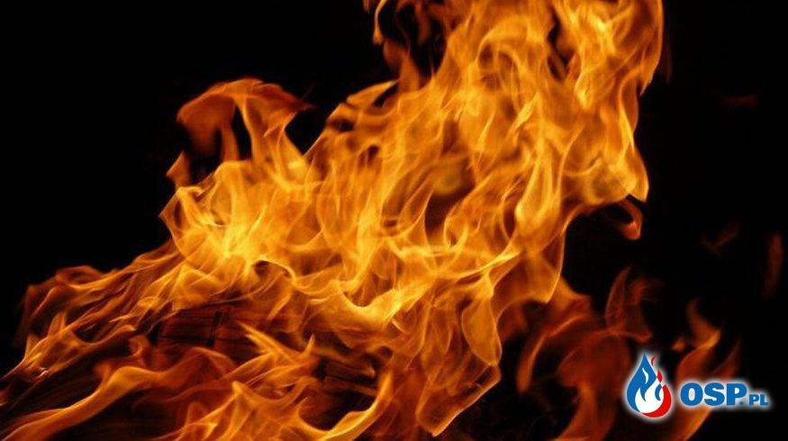 Amica – plama oleju przy stolarni OSP Ochotnicza Straż Pożarna