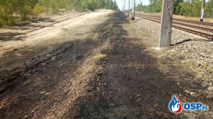 Miały – pożar nasypu kolejowego OSP Ochotnicza Straż Pożarna