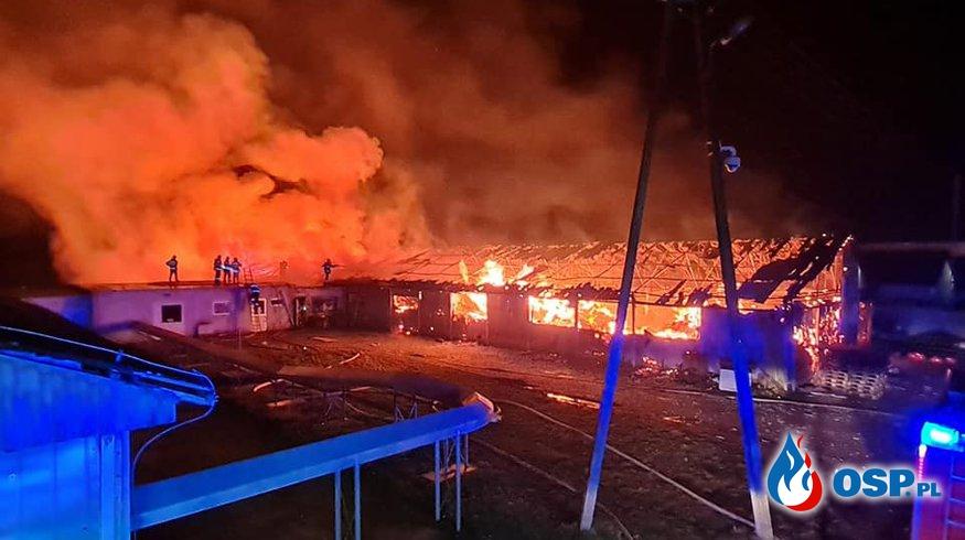 Pożar na fermie drobiu. Akcja gaśnicza trwała całą noc. OSP Ochotnicza Straż Pożarna
