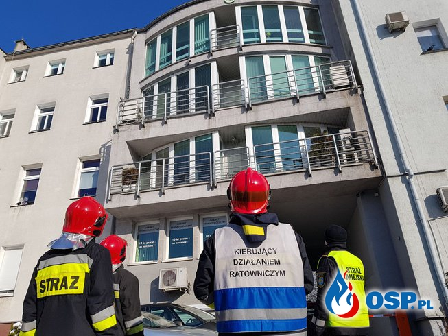 Strażacy wezwani do uwięzionego... gołębia. Wyjątkowo nietypowa akcja w Opolu. OSP Ochotnicza Straż Pożarna