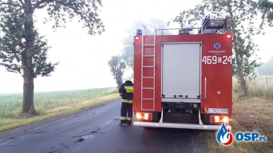 21.06.19 4:10 - KONAR DRZEWA NA JEZDNI, Janikowo/Broniewice OSP Ochotnicza Straż Pożarna