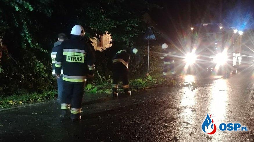 Powalone drzewo na ul. Łukasiewicza OSP Ochotnicza Straż Pożarna