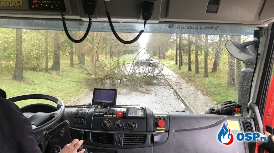 149-153/2019 Usuwanie skutków silnego wiatru OSP Ochotnicza Straż Pożarna