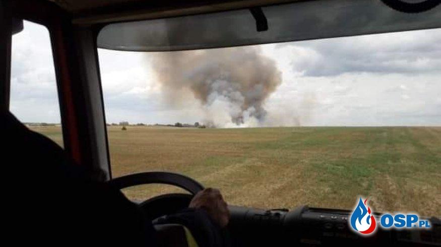 Pożar 10 hektarów zboża OSP Ochotnicza Straż Pożarna