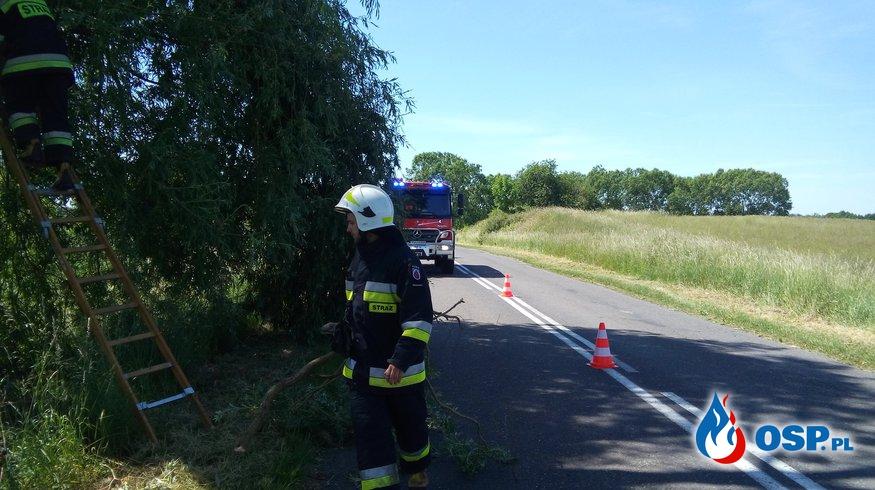Miejscowe zagrożenie Jaglisko 07-06-2016r. OSP Ochotnicza Straż Pożarna