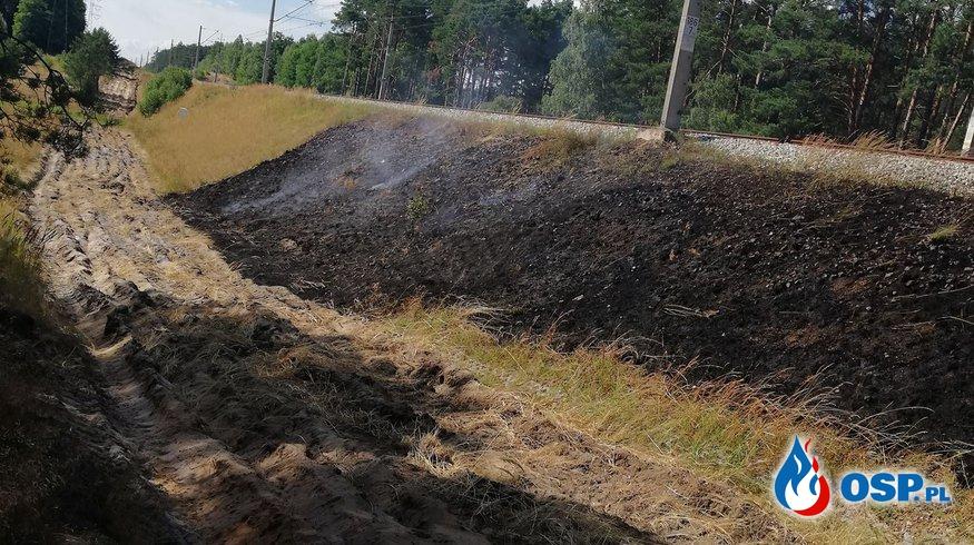 Pożar nasypu kolejowego ppomiędzy Bytnicą a Radnicą. OSP Ochotnicza Straż Pożarna