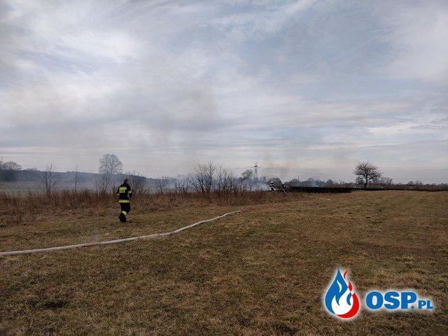 Pożar traw - Mętków OSP Ochotnicza Straż Pożarna