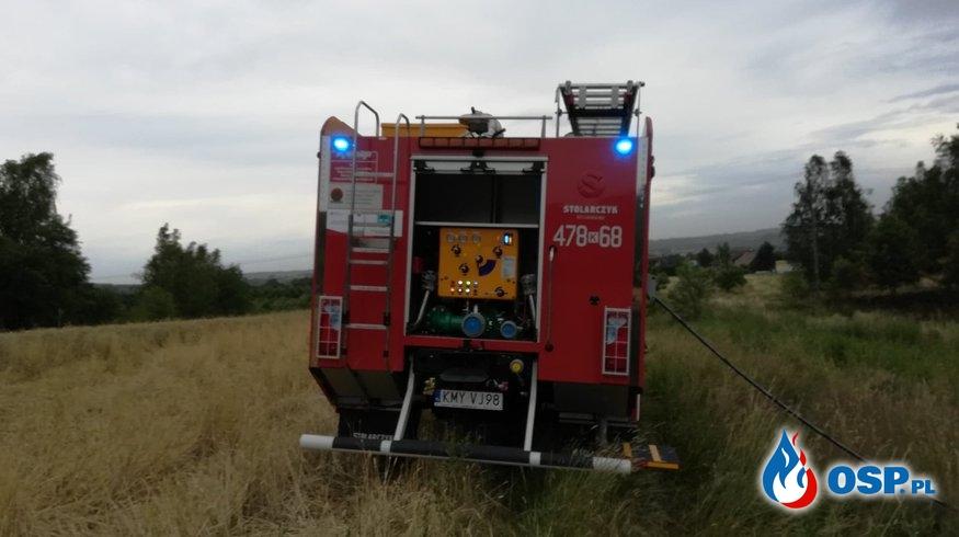 Kolejny pożar traw i usuwanie skutków silnego wiatru - 1 lipca 2019r. OSP Ochotnicza Straż Pożarna