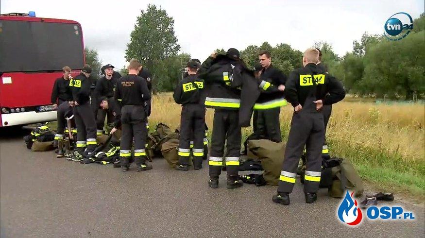 Ponad 80 strażaków włączonych w poszukiwania... pytona na Mazowszu OSP Ochotnicza Straż Pożarna