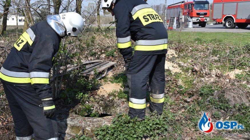 Zdarzenie 27/2019 OSP Ochotnicza Straż Pożarna