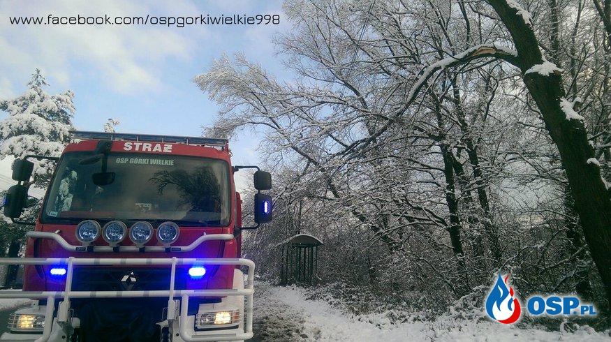 Kolejne skutki opadów ciężkiego śniegu OSP Ochotnicza Straż Pożarna