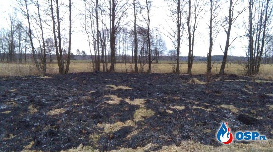 Pożar trawy w Kiejszach OSP Ochotnicza Straż Pożarna