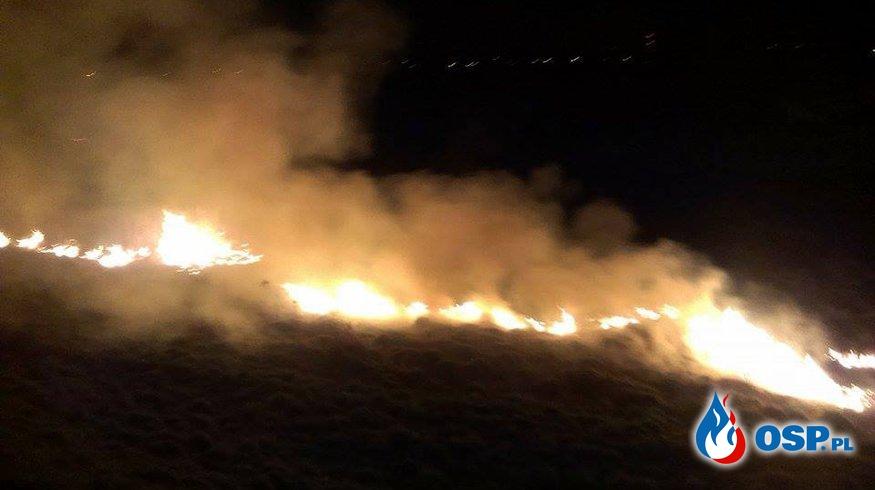 Pożar traw 17.03.2015r. OSP Ochotnicza Straż Pożarna