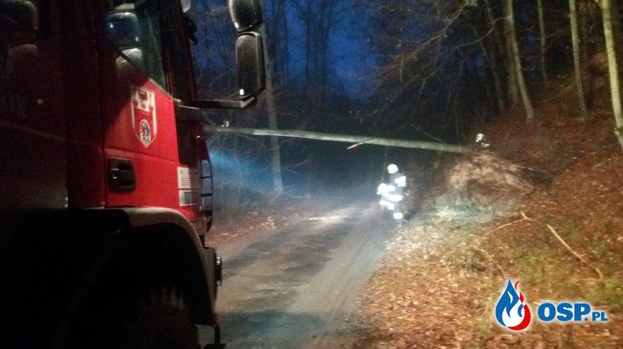 Drzewo zablokowało przejazd OSP Ochotnicza Straż Pożarna