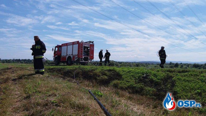 Pożar traw - ul. Sikorskiego w Rozkochowie OSP Ochotnicza Straż Pożarna