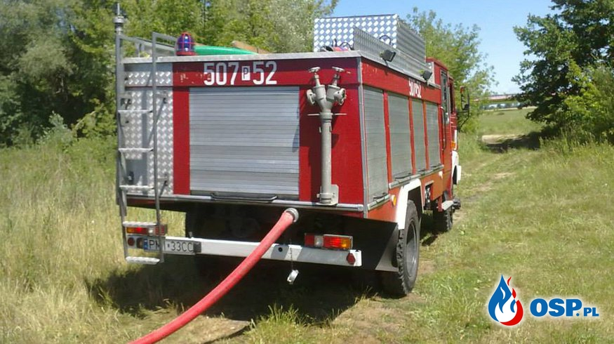 Pożar lasu Puszcza OSP Ochotnicza Straż Pożarna