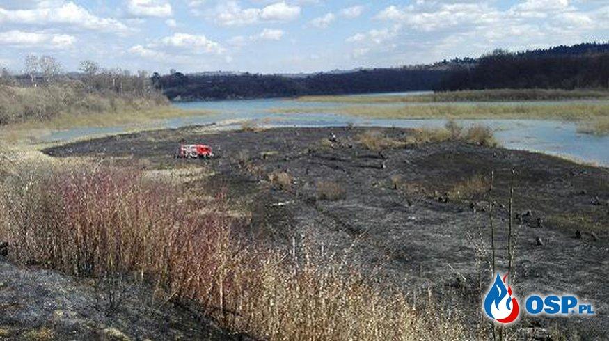 Spaleniu uległo 2 ha traw! 5 zastępów w akcji - Rajskie OSP Ochotnicza Straż Pożarna