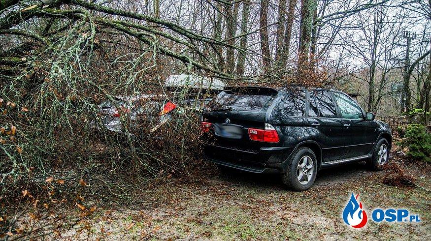 Drzewo spadło na 3 samochody OSP Ochotnicza Straż Pożarna