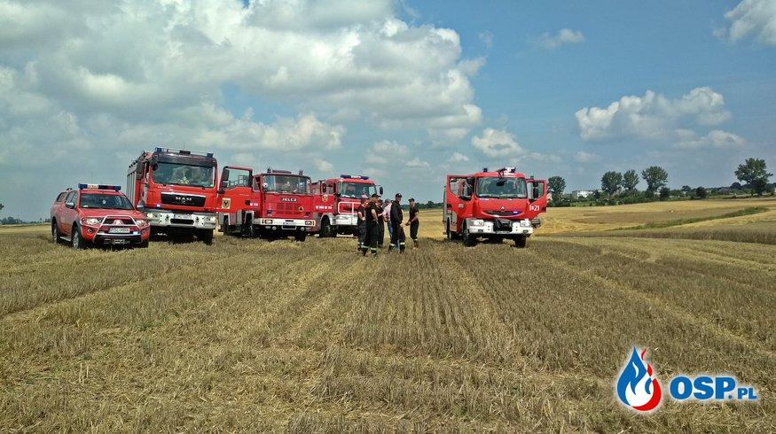 Pożar zboża na pniu w miejscowości Osówiec OSP Ochotnicza Straż Pożarna