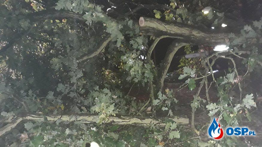 Orkan Ksawery cz.2 OSP Ochotnicza Straż Pożarna