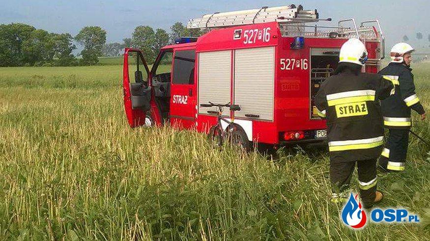 Pożar drzewa Żukowo OSP Ochotnicza Straż Pożarna
