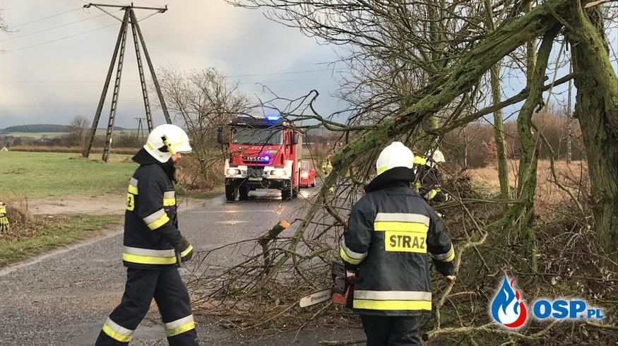 19/2020 Drzewo na drodze OSP Ochotnicza Straż Pożarna