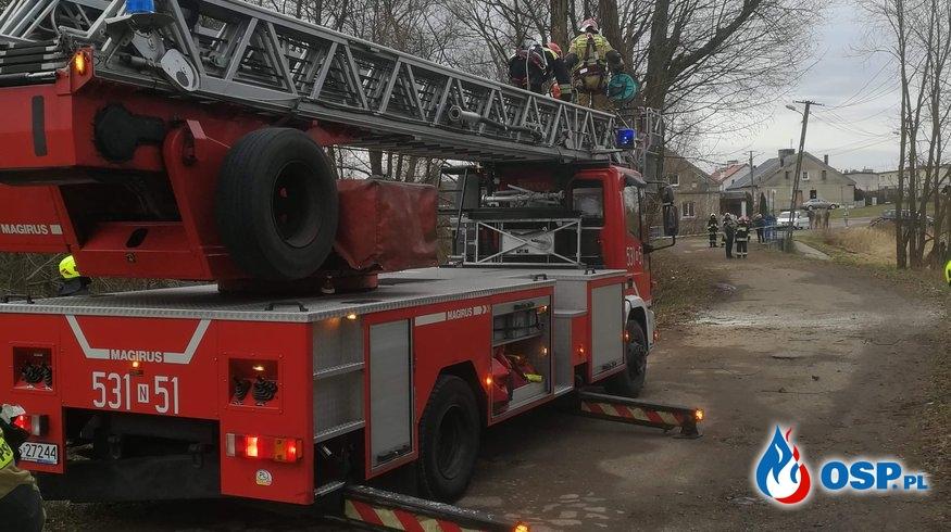Uszkodzone drzewo w miejscowości Nastajki OSP Ochotnicza Straż Pożarna