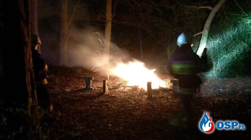 46/2019 Duze ognisko w srodku parku OSP Ochotnicza Straż Pożarna