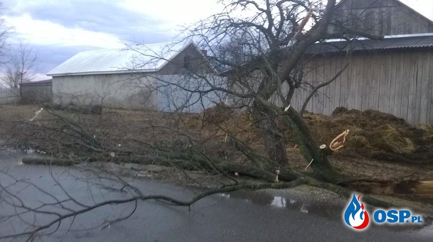 Skutki silnego wiatru OSP Ochotnicza Straż Pożarna