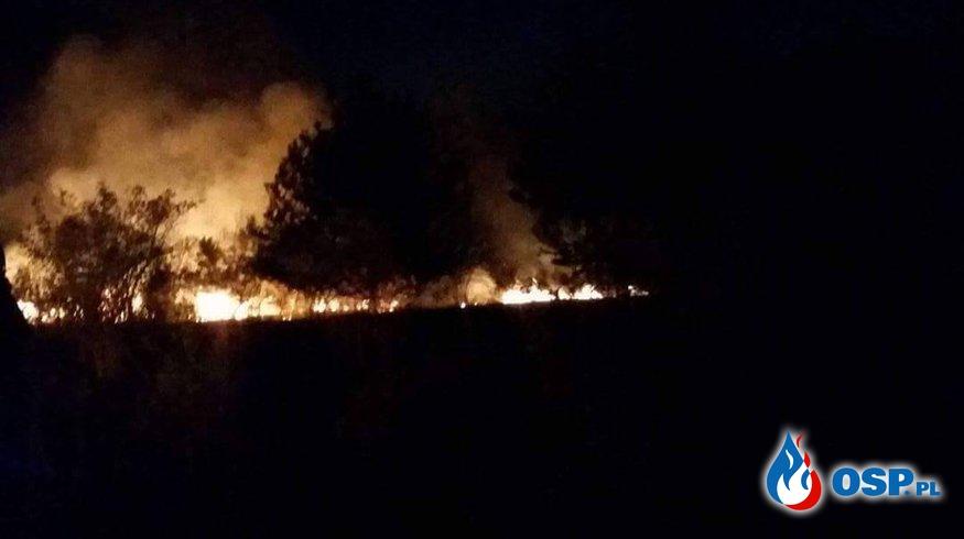 Zdarzenie nr 23/2017 OSP Ochotnicza Straż Pożarna