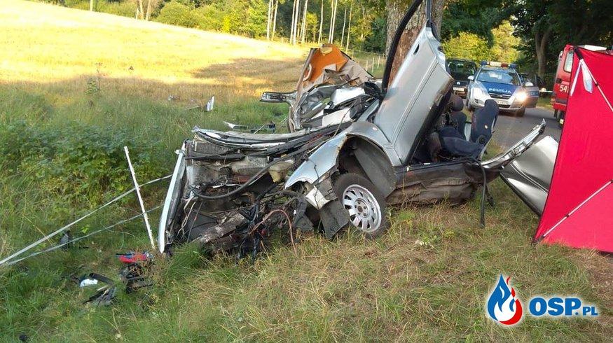 15-latek doszczętnie roztrzaskał samochód na drzewie. Zginął. OSP Ochotnicza Straż Pożarna