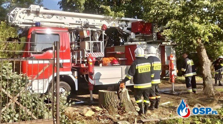 Usuwanie skutków nawałnicy 20.07.2015 OSP Ochotnicza Straż Pożarna