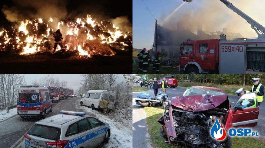 Październikowe akcje OSP na zdjęciach. Zobaczcie galerię! OSP Ochotnicza Straż Pożarna