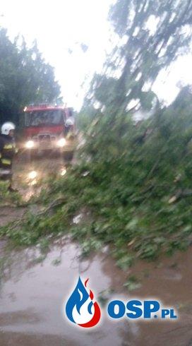 Usuwanie skutków gwałtownego załamania pogody 20.06.2020 OSP Ochotnicza Straż Pożarna