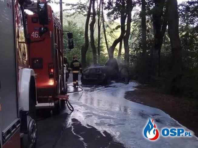 Wypadek i pożar. Auto zapaliło się po zderzeniu z drzewem. OSP Ochotnicza Straż Pożarna
