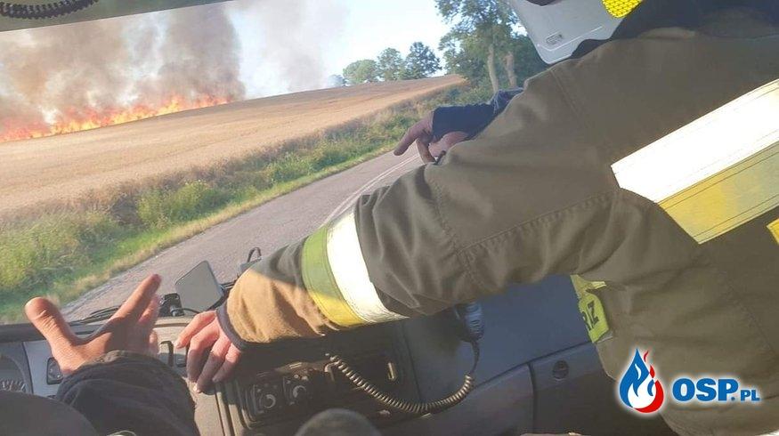 Pożar zboża w Żukowie OSP Ochotnicza Straż Pożarna