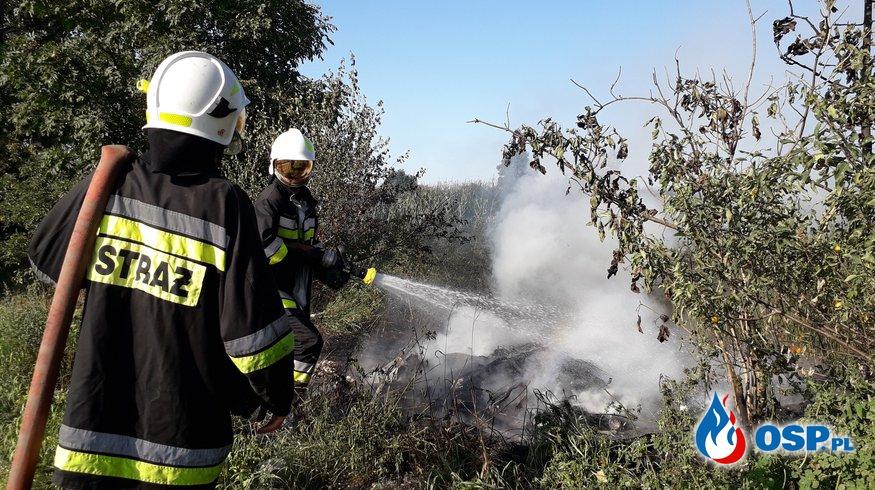 Pożar wyrzuconych śmieci OSP Ochotnicza Straż Pożarna