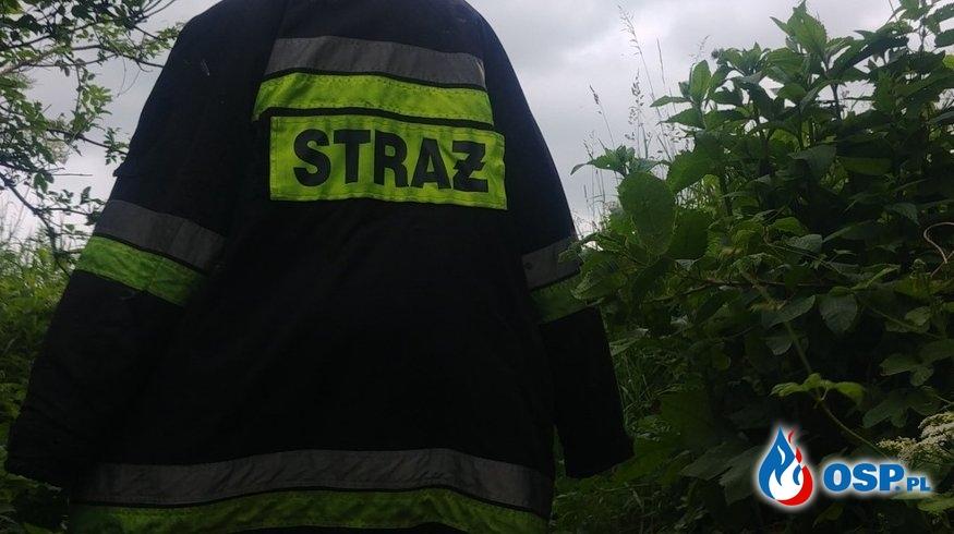 Szczęśliwy finał poszukiwań OSP Ochotnicza Straż Pożarna