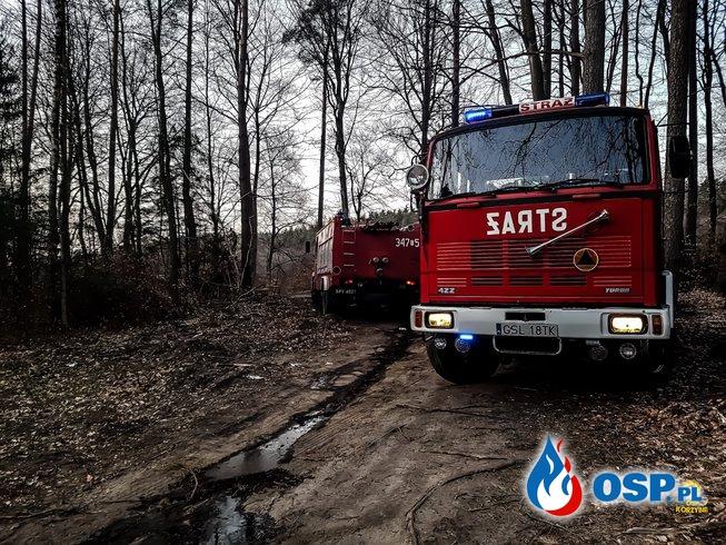 Pożar poszycia Leśnego  Barcino-Bronowo 05-04-2019 OSP Ochotnicza Straż Pożarna