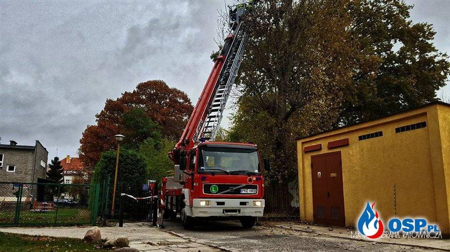 Zwisający konar OSP Ochotnicza Straż Pożarna
