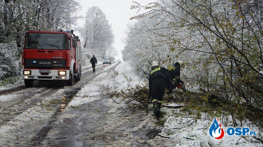 Skutki opadów śniegu na trasie Śmicz-Ścinawa oraz w Białej ul. Nyska OSP Ochotnicza Straż Pożarna