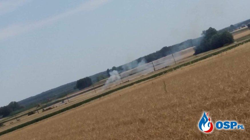 Pożar nasypu kolejowego OSP Ochotnicza Straż Pożarna