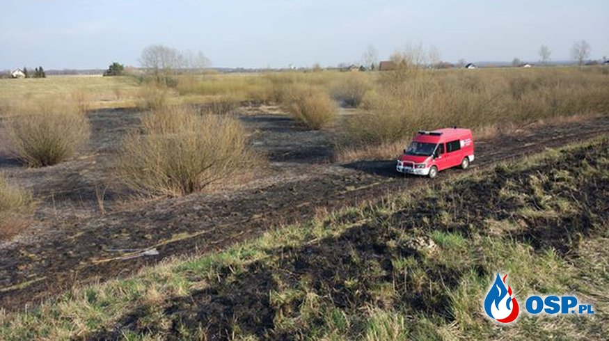 pożar nieużytków - Wyżyce OSP Ochotnicza Straż Pożarna