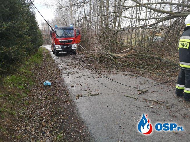 Dwa dni walki z silnymi wichurami... OSP Ochotnicza Straż Pożarna