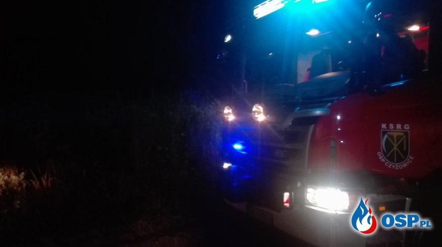 Pożar nieużytków. OSP Ochotnicza Straż Pożarna